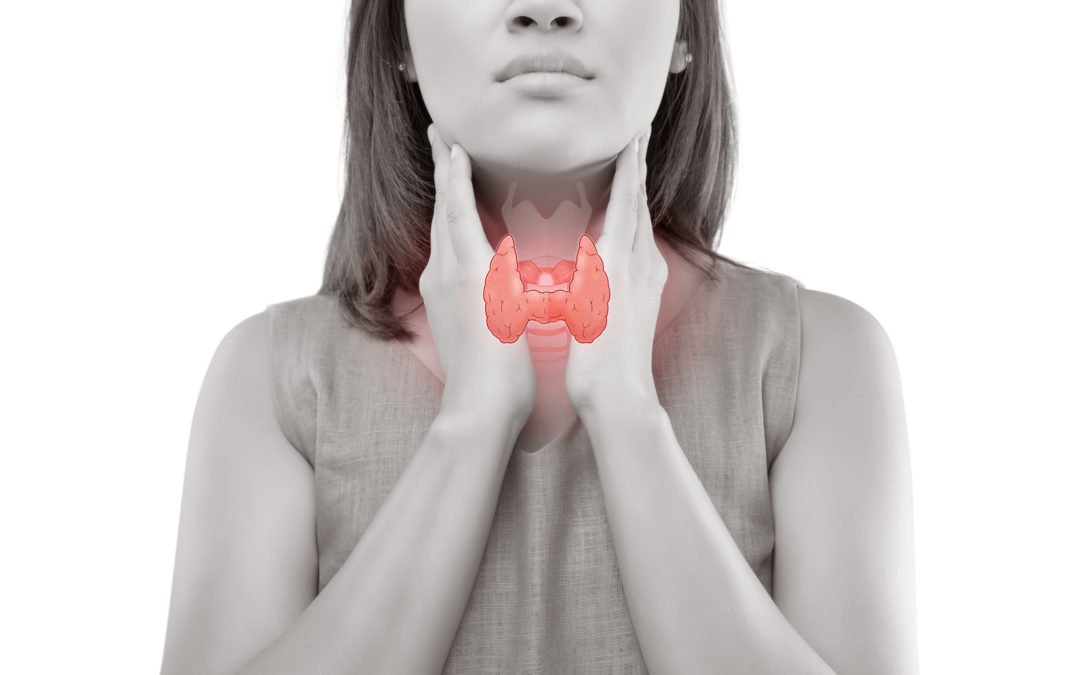 hypothyroidism Women thyroid gland control.