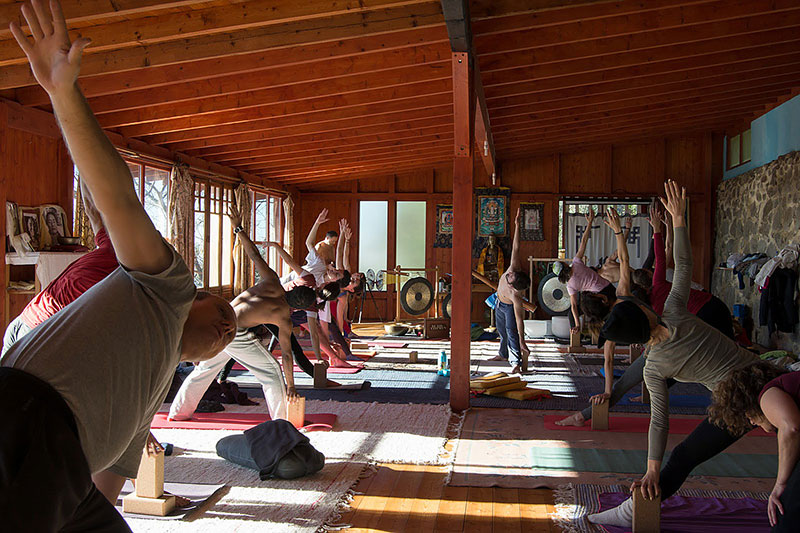 group of yogis on retreat